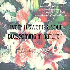 Flower Quotes Classy 48 Beautiful Flower Quotes Flowers Of The Field Las Vegas