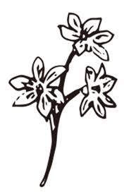 花植物のイラスト画像イラスト画像フリー素材ラベル印刷net