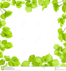Green Leaves Frame Stock Image Image Of Branch Floral 28790355