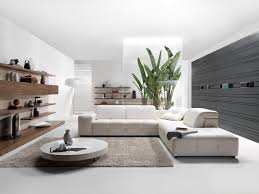Modern White Living Room Furniture Best 20 Contemporary Ideas On With Decor