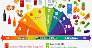 Ph Spectrum Food Chart Health Nutrition Tips Alkaline Acidic Foods Chart The