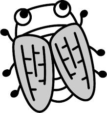 可愛い蝉の白黒イラスト イラストストック
