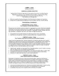 Personal Banker Resume Examples And Lending Executive Objective