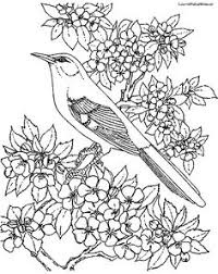 Small Picture Song Sparrow coloring page from Sparrows category Select from