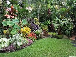 Tropical Flower Garden Landscape Designs Simple Tropical Garden Design For Small Spaces Small