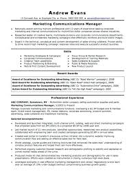 Professional Resume Builder Awesome 6024 Resume Builder Services Plain Design Professional Resume Writing