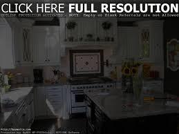 Kitchen Cabinets Orange County Custom Kitchen Cabinets Orange County Design Porter