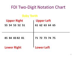 Fdi Notation Charting 19 Disclosed Tooth Chart Fdi