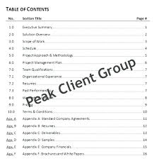 Information Technology Business Proposal Plan Sample Great Example ...