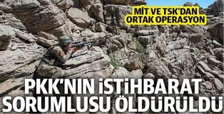 PKK'nın Metina alan sorumlusu TSK ve MİT ortak operasyonuyla öldürüldü