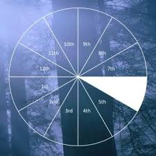Where Is Chiron In My Chart Natal Chiron In The 6th House Mindfullness Astrology