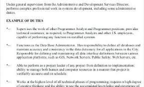 Pretty Senior Programmer Job Description Photos >> Analyst Job ...