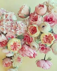 Small Picture Best 25 Juliet garden rose ideas on Pinterest David austin