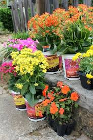 home depot flowers home depot certified nursery consultant colorful flowers home depot recycle plant pots