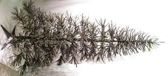 Lit Twig Christmas Tree  Christmas Lights DecorationTwig Tree Christmas