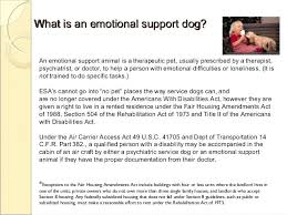 How To Get A Doctors Note For An Emotional Support Dog Consultant Referrals Make Your Own Doctors Note Pdf Whatapps Co