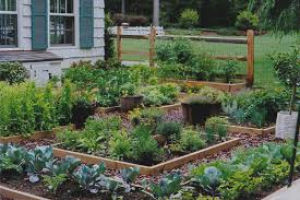 Small Picture Best Ideas About Rectangle Herb Garden Design Clean lines and