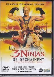 3 Ninjas High Noon at Mega Mountain [1998] [DVD]: Amazon.de: Hulk Hogan,  Loni Anderson: DVD & Blu-ray