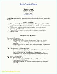 Executive Level Resume Kizi Gamesme