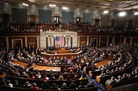 Joint Session Of Congress Seating Chart Organizations And Groups Introduction To Sociology