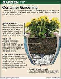 Best 25 Potted Plants Ideas On Pinterest  Outdoor Flower Pots Container Garden Ideas Pinterest