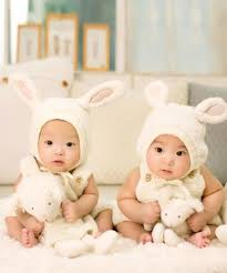 Types Of Twins Chart There Are 7 Different Kinds Of Twins Mind Blowing Facts