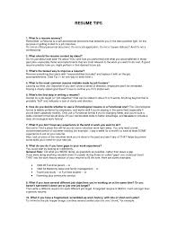 Stunning What S A Job Resume Contemporary Professional Resume