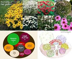 container garden plans. hummingbirds garden hummingbird and butterfly design gardens with plans container to attract r