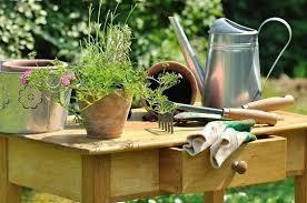 Resultado de imagen de fotos de regadera y plantas regadas