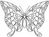 Disegno Di Farfalla Per Bambini Da Stampare Gratis E Da Colorare