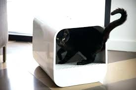 image covered cat litter. Cat Litter Box Furniture Diy Covered Grand Modern Style Campaign Image