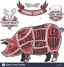 Pork Cuts Butcher Diagram Cow Illustrations On White