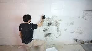 waterproofing basement walls with