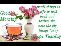 Tuesday Good Morning Quotes Best of Happy Tuesday Morning Good Morning Lovely Wisheswhatsapp Video