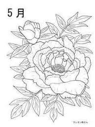 5月牡丹の花の塗り絵の下絵画像 пионы2019 花の塗り絵牡丹の
