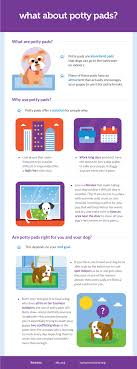 Puppy House Training Chart Potty Training Your Puppy Doesnt Have To Be A Nightmare
