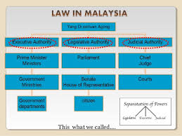 Malaysian Government Structure Chart Mpu 3173 Governmental Structure Main Component Of