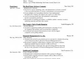 Hybrid Resume Template Word Lovely Resume Template Job Sample ...