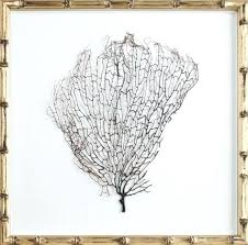 bamboo wall art natural c sea fan wall art in a champagne bamboo frame bamboo wall
