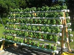 a frame hydroponic system