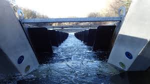a custom automated fish ladder monitoring system fish ladder cameras exposed