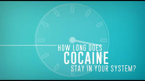 Drug Chart For Drugs In Your System How Long Does Cocaine Stay In Your System Blood Urine