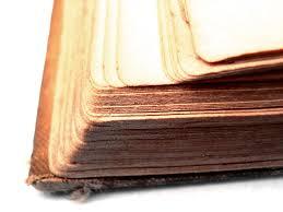 parvana book essay essay help parvana book essay