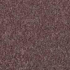 home decorators collection carpet sample eden cove in color