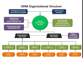Hershey S Organizational Chart And Organizational Structure Organizational Structure Ohio Childrens Hospital Association