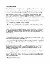 Example Of High School Essays Biographical Essay Sample Topics For Argumentative Essays