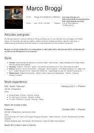 Videographer Resume Marco Broggi Videographer Resume Oct2015