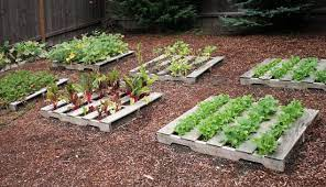 diy garden ideas for using old pallets