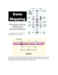 Gene Mapping Problems Gene Mapping Handout