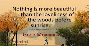 Quotes On Beautiful Morning Best Of Enjoy The Beauty Of Nature Early Morning Quotes